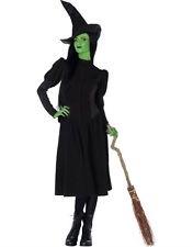 Wicked Costume